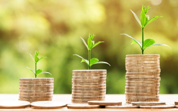 desarrollo-economico-aprueba-un-programa-de-ayudas-al-emprendimiento-por-valor-de-285.000-euros